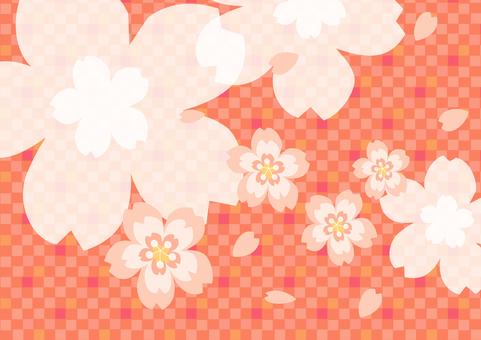 벚꽃의 프레임 9