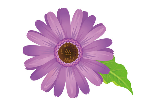 Lavender clipping of light purple Gerbera