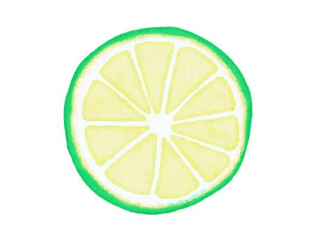 Watercolor ingredients series Kabosu, Sudachi, Lime