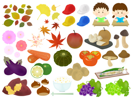 Autumn Material Illustration Set