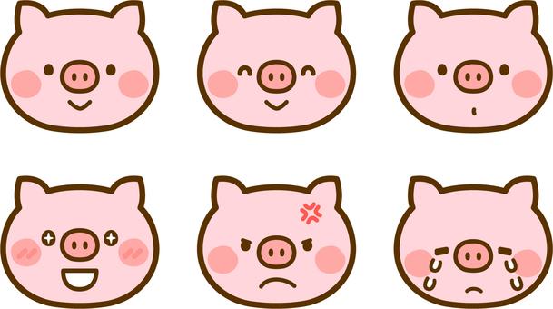 各種豬的表達