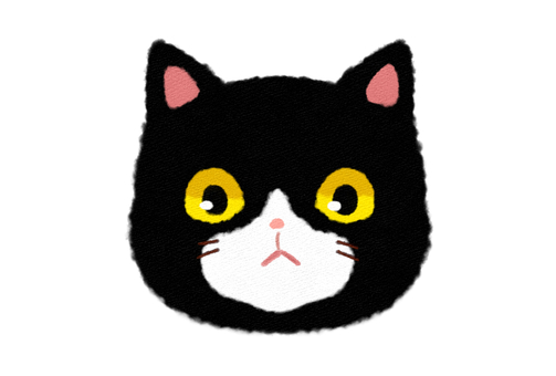 Black fluffy cat face Front