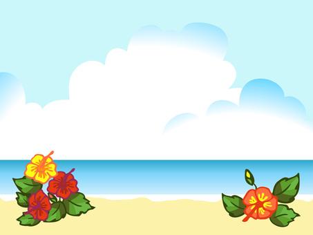 Coast and hibiscus