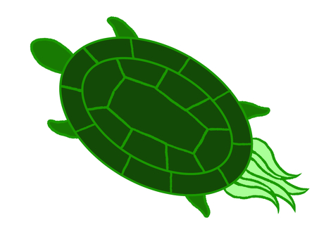 Long-lived turtle with long tail