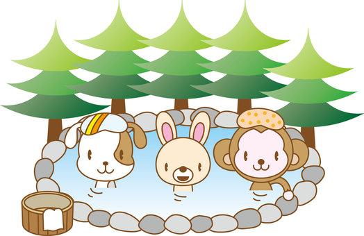 Animals - Onsen