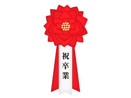 Ribbon insignia (graduation)