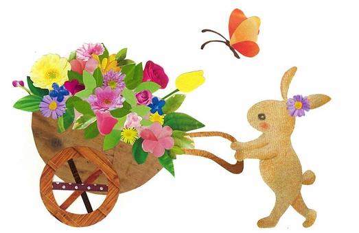 Rabbit flower shop