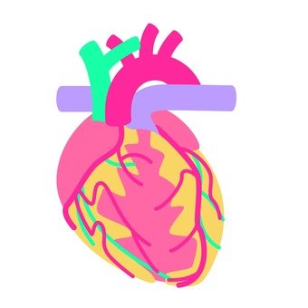 Organs 4