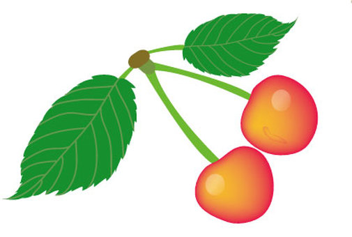 Illustration of two cherries and two leaves
