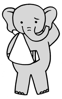 Elephant fracture