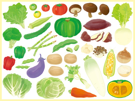 Vegetable illustration (bannerless)