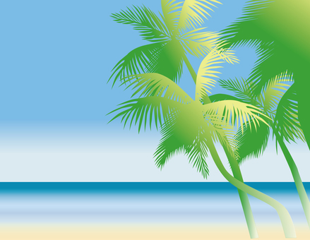 Palm tree noon