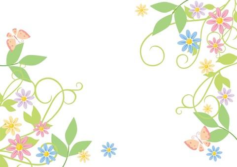 Veterinary _ flower decoration