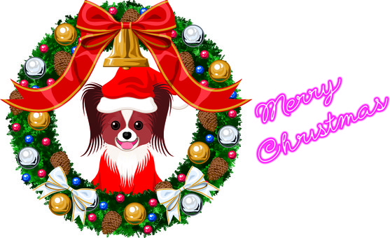 Christmas card Dog Santa
