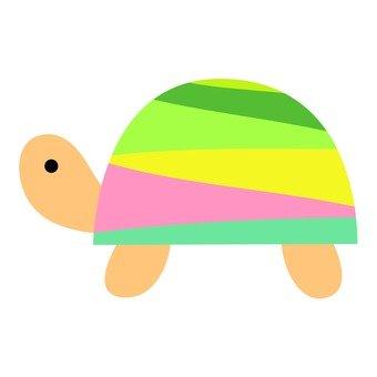 Colorful turtle 1