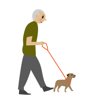 Grandpa taking a walk of a dog