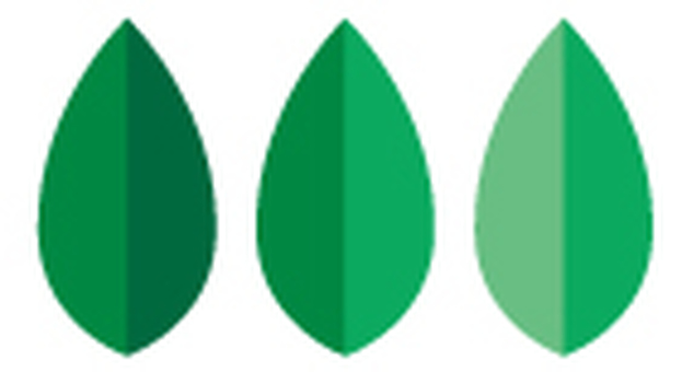 Leaves _ three rows