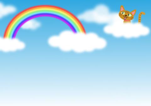 cat_ blue sky and cat 2