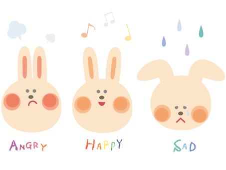 Facial expression _ rabbit