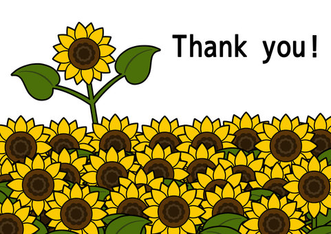 Thank you card (1) sunflower