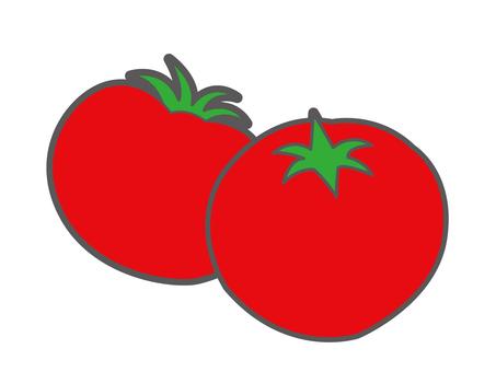 여름 야채 토마토