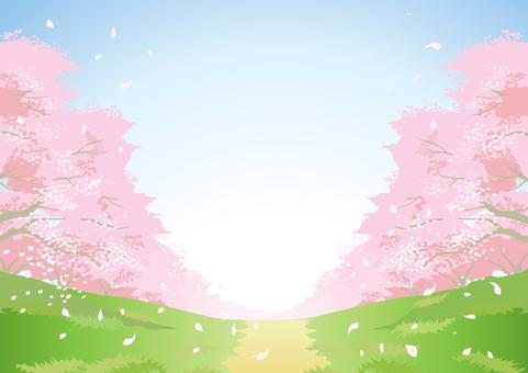 Sakura Material 8
