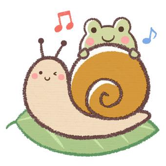 Rainy season snail and frog