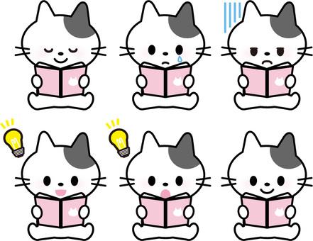 Cat - Reading -