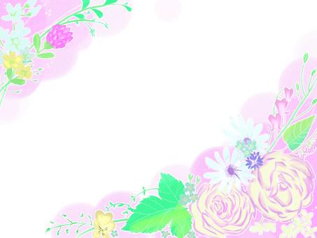 Pink rose background pink