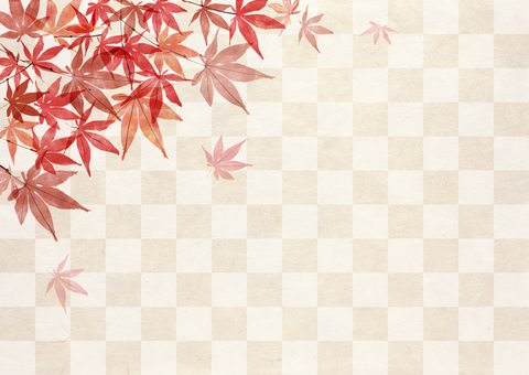 Autumn leaves _ lattice_ Japanese paper background 2048