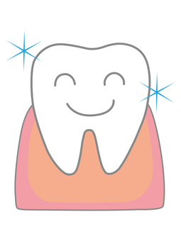 Teeth and gums b