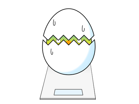 Eggs on a scale