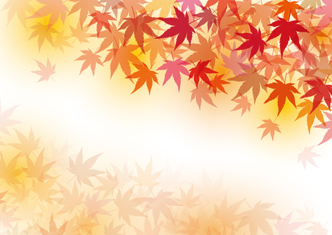 Autumn leaves maple autumn background material texture wallpaper decoration