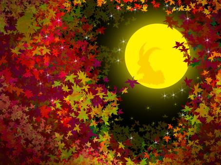 Autumn leaves and moon (Moon Rushagi)