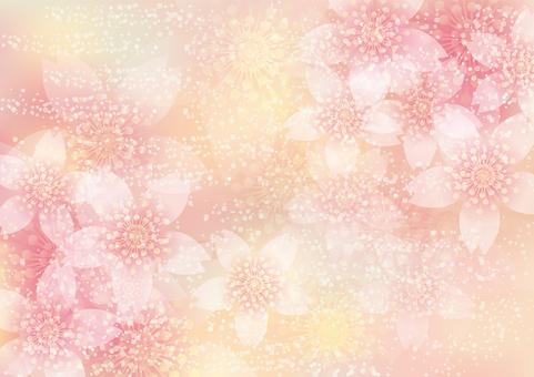 벚꽃의 꽃 155