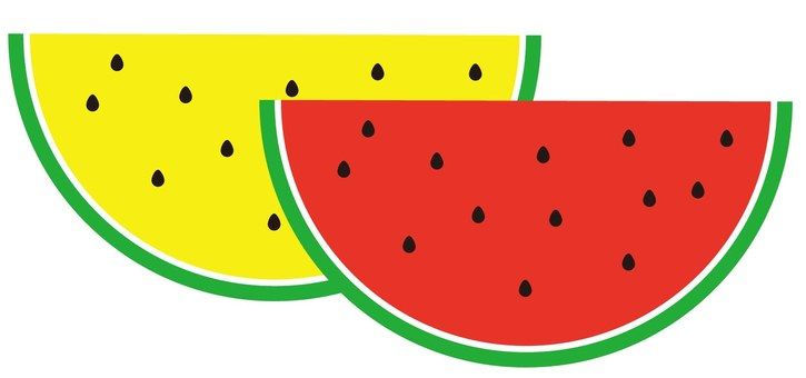 Watermelon (red and yellow)