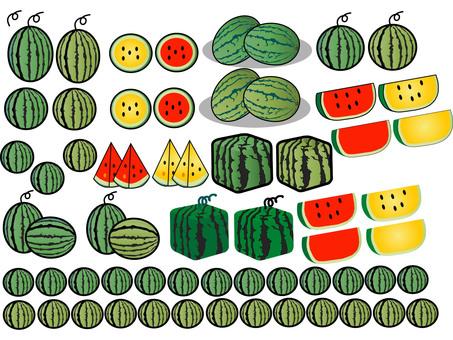Watermelon variety set 7