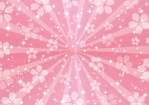 사쿠라 핑크 방사