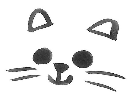 Cat face face face