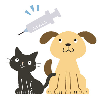 Dog and cat preventive injection