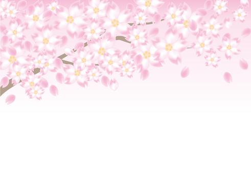 Cherry tree frame B