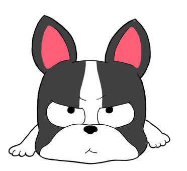 Boston Terrier lying face down