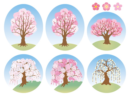 Cherry tree, peach, plum tree
