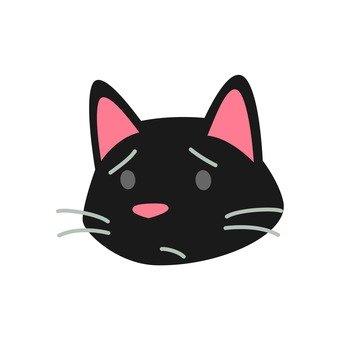 Cat - Face of a sad cat