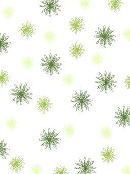 Flower_ green