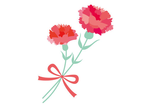 Carnation Mother's Day