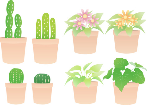 Plants, cactus, flower set