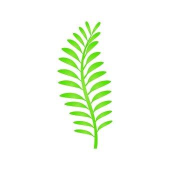 Fern leaf 1