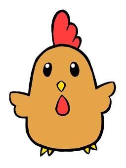 닭 (나고야 코친 컬러)