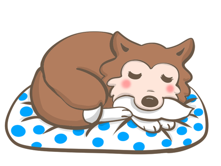 Dog curled up on a cushion